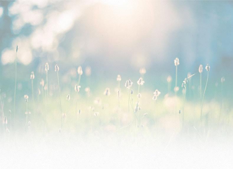 Modello integrato: Somatic Experiencing e Counseling